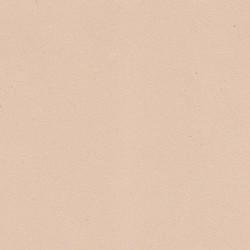 Fommy liscio col. Carne 2 mm