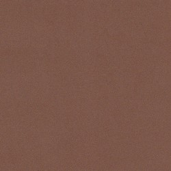 Fommy liscio col. Marrone 2 mm