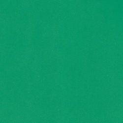 Fommy liscio col. Verde...