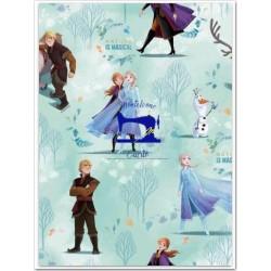 Tessuto Disney Fantasia Frozen